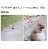 Food, Girl Memes, and Never: Me thinking about my next meal after l  just ate Never not thinking about food