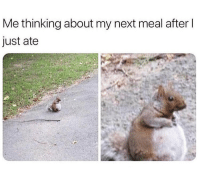 Memes, 🤖, and Next: Me thinking about my next meal after l  just ate When's dinner? 😂