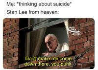 Heaven, Stan, and Stan Lee: Me: *thinking about suicide*  Stan Lee from heaven:  ARVEL  Don't make me come  down there, you punk. I believe this would actually happen.