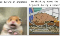Shower, MeIRL, and Argument: Me thinking about the  Argument during a shower  Me  during an argument meirl