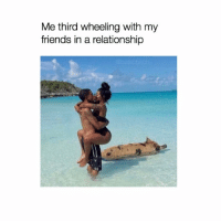 Tag someone who needs to go to pig island 🌴🐖 pigisland holiday vacay bffmemes: Me third wheeling with my  friends in a relationship Tag someone who needs to go to pig island 🌴🐖 pigisland holiday vacay bffmemes