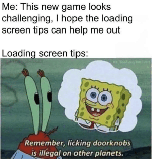 Good tip: Me: This new game looks  challenging, I hope the loading  screen tips can help me out  Loading screen tips:  Thel nyie  Remember, licking doorknobs  is illegal on other planets. Good tip