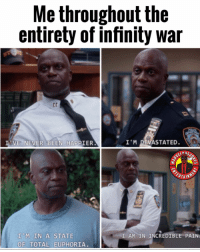 Anaconda, Memes, and Infinity: Me throughout the  entirety of infinity war  VE NEVER BEEN HAPPIER  I'M DEVASTATED.  11, M.,IN A STATE  OF TOTAL EUPHORIA  I AM IN INCREDIBLE PAIN Rate Brooklyn99 from 0-100 MarvelousJokes