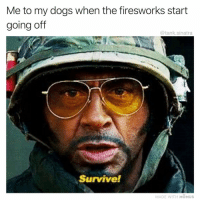 Dogs, Funny, and Tank: Me to my dogs when the firesworks start  going off  @tank.sinatra  Survive!  MADE WITH MOMUS Easy for you to say!