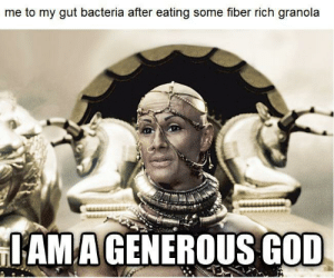 meirl: me to my gut bacteria after eating some fiber rich granola  IAMAGENEROUS GOD meirl