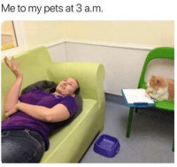 Dank, Pets, and 🤖: Me to my pets at 3 a.m.