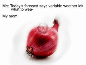 Memes, Forecast, and Weather: Me: Today's forecast says variable weather idk  whaf to wea  My mom:  IlC Thanks to Paride Gnesotto