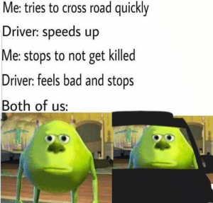 meirl: Me: tries to cross road quickly  Driver: speeds up  Me: stops to not get killed  Driver: feels bad and stops  Both of us: meirl