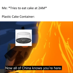 China, Cake, and Plastic: Me: *Tries to eat cake at 2AM*  Plastic Cake Container:  Now all of China knows you're here