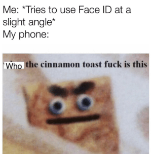 Format is👌: Me: *Tries to use Face ID at a  slight angle*  My phone:  Who the cinnamon toast fuck is this Format is👌