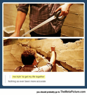 lolzandtrollz:  A Bit Too Accurate: me tryin' to get my life together  Nothing as ever been more accurate  you should probably go to TheMetaPicture.com lolzandtrollz:  A Bit Too Accurate