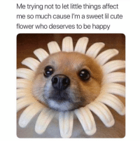 Beautiful, Cute, and Affect: Me trying not to let little things affect  me so much cause I'm a sweet lil cute  flower who deserves to be happy *cue Christina aguileras beautiful*