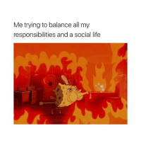 Life, Girl Memes, and All: Me trying to balance all my  responsibilities and a social life i need a nap