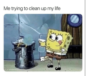 Cleanly: Me trying to clean up my life