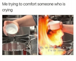 Trying to comfort someone by Holofan4life FOLLOW HERE 4 MORE MEMES.: Me trying to comfort someone who is  crying  Oh my God That's salt  'm an idiot  I throw in sugar. Trying to comfort someone by Holofan4life FOLLOW HERE 4 MORE MEMES.