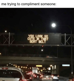 me irl by fishbewithyou MORE MEMES: me trying to compliment someone:  YOU LOOK SO  CUTE IN THAT  SEAT BELT me irl by fishbewithyou MORE MEMES