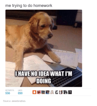 Homework Meme: me trying to do homework  I HAVE NOIDEAWHATIM  DOING  RETWEETS LIKES  890  556  Source: awwdorables