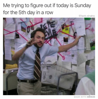 Funny, Today, and Sunday: Me trying to figure out if today is Sunday  for the 5th day in a row  @tank.sinatra  MADE WITH MOMUS All structure has disappeared