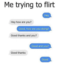 Funny, Good, and How: Me trying to flirt  Hey  Hey how are you?  Good, how are you doing?  Good thanks and you?  Good and you?  Good thanks  Good Schmood