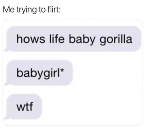 Dank, Life, and Wtf: Me trying to flirt:  hows life baby gorilla  babygirl  wtf Auto correct makes for great stories.