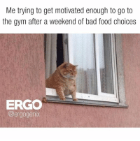 Gym, Weekend, and Enough: Me trying to get motivated enough to go to  the gym after a weekend of bad food choices  ERGO  @ergogenix Ugh.