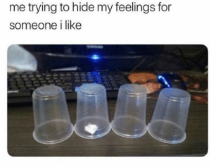 Meirl: me trying to hide my feelings for  someone i like Meirl