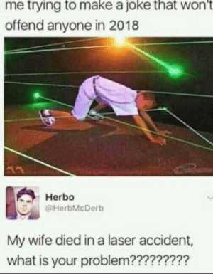 Dank, Memes, and Target: me trying to make a joke that wont  offend anyone in 2018  Herbo  @HerbMcDerb  My wife died in a laser accident,  what is your problem???????? bUt ItS nOt ThAt HaRd To bE nIcE! by bigdaddytoca MORE MEMES