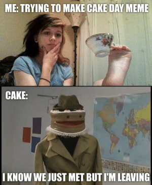 thinking is hard: ME: TRYING TO MAKE CAKE DAY MEME  CAKE:  I KNOW WE JUST MET BUT I'M LEAVING thinking is hard