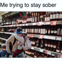 Funny, Lol, and Memes: Me trying to stay sober When do I have to drop posting birdbox memes.... lol they're too funny 😂😂😂😭