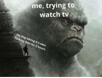 Me_irl: me, trying to  watch tv  my dog eating it's own  fucking feet for 3 hours Me_irl