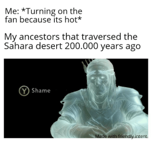 Be Like, Shame, and Desert: Me: *Turning on the  fan because its hot*  My ancestors that traversed the  Sahara desert 200.000 years ago  (Y Shame  Made with friendly intent It really be like that