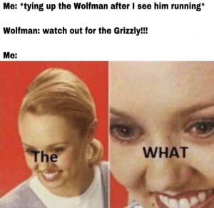 Never ran away so fast in my entire life: Me: *tying up the Wolfman after I see him running*  Wolfman: watch out for the Grizzly!!  Мe:  WHAT  The  u/Gatorkid35 Never ran away so fast in my entire life