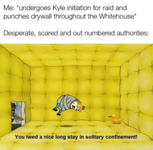 Desperate, Dank Memes, and Nice: Me: *undergoes Kyle initiation for raid and  punches drywall throughout the Whitehouse*  Desperate, scared and out numbered authorities:  You need a nice long stay in solitary confinement! I'm trying hard here