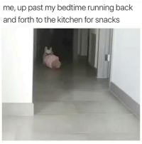 Food, Science, and Girl Memes: me, up past my bedtime running back  and forth to the kitchen for snacks Food tastes so much better when you're late night snacking. It's like, science.