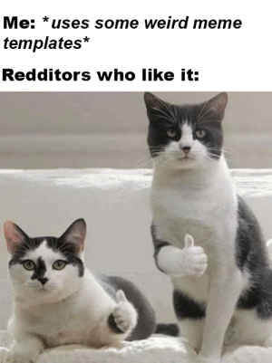 Meme, Weird, and Templates: Me: *uses some weird meme  templates*  Redditors who like it: is it weird?
