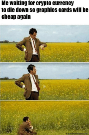 Omg, Tumblr, and Blog: Me waiting for crypto currency  to die down so graphics cards will be  cheap again  tme/cryptohumor360 omg-humor:  #Cryptokrunch #bitcoin #cryptocurrency