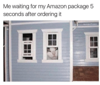Amazon, Memes, and Help: Me waiting for my Amazon package 5  seconds after ordering it <p>Just paw-paring for the package to arrive. Don't mind me.</p><p><b><i>You need your required daily intake of memes! Follow <a>@nochillmemes</a>​ for help now!</i></b><br/></p>