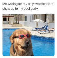 Where the heck are those guys: Me waiting for my only two friends to  show up to my pool party Where the heck are those guys