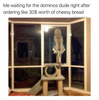 Ass, Dude, and Soon...: Me waiting for the dominos dude right after  ordering like 30$ worth of cheesy bread  @cabbagecatmemes If I die soon blame it on that gross ass cheesy bread with jalapeños in it