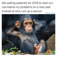 Definitely, Funny, and Money: Me waiting patiently for 2019 to start sol  can blame my problems on a new year  instead of who I am as a person tank sinatra It's definitely not my problem (Like and comment on this post within the first 30 minutes to get a chance to win a gift card. And congrats to @lifeofgingerly for being the winner on the last post! Come get yo money)