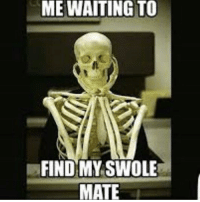 Any time now...: ME WAITING TO  FIND MY SWOLE  MATE Any time now...