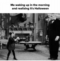 YESSSSS 👹👻🎃: Me waking up in the morning  and realizing it's Halloween  MGM Tel YESSSSS 👹👻🎃