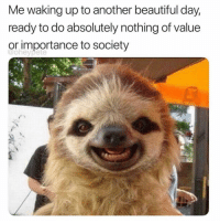 Beautiful, Girl Memes, and Another: Me waking up to another beautiful day,  ready to do absolutely nothing of value  or importance to society  @oheypete Let's get this 🍞🥐🥖 @oheypete
