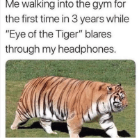 "Gym, Memes, and Eye of the Tiger: Me walking into the gym for  the first time in 3 years while  ""Eye of the Tiger"" blares  through my headphones Who else can relate? via /r/memes http://bit.ly/2TAZ2uQ"