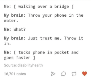 meirl: Me [ walking over a bridge  My brain: Throw your phone in the  water.  Me: What?  My brain Just trust me. Throw it  in.  Me: [ tucks phone in pocket and  goes faster  Source: disabilityhealth  16,701 notes meirl