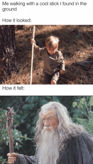 meirl: Me walking with a cool stick I found in the  ground  How it looked:  How it felt: meirl