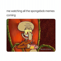 Memes, SpongeBob, and All The: me watching all the spongebob memes  coming  @iamathicchotdog follow @iamathicchotdog for more spongebob memes!!