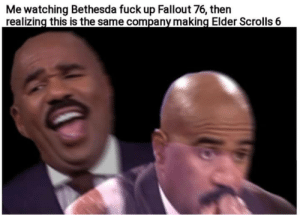 Skyrim memes for nostalgia: Me watching Bethesda fuck up Fallout 76, then  realizing this is the same company making Elder Scrolls 6 Skyrim memes for nostalgia