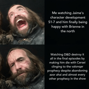 Happy, Boy, and D&d: Me watching Jaime's  character development  S1-7 and him finally being  happy with Brienne in  the nortlh  Watching D&D destroy it  all in the final episodes by  making him die with Cersei  clinging to the valonqar  prophecy despite abandoning  azor ahai and almost every  other prophecy in the show Pouring one out for my boy (and Brienne)