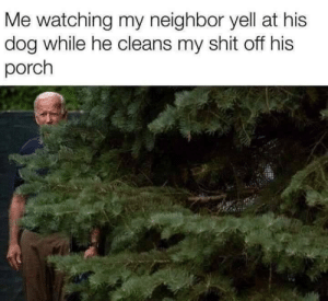 Next level shit.: Me watching my neighbor yell at his  dog while he cleans my shit off his  porch Next level shit.